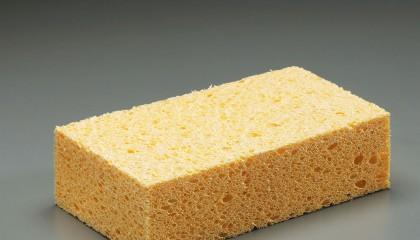 Sponge – Cellulose